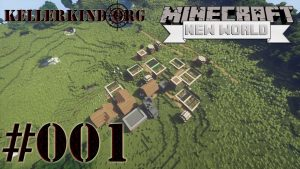 Playlist zu Minecraft: A New World